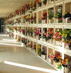concessione loculo cimiteriale